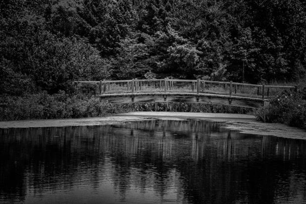 Bridge ~